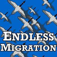 Endless Migration